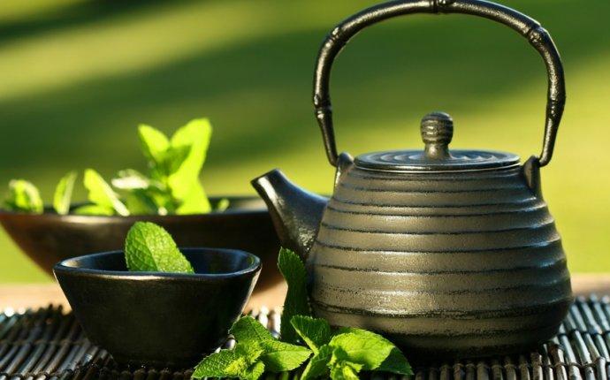 Green Tea as Fat Burner - Myth or Fact?Rivertea Blog
